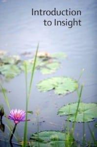 Introduction to Insigth Meditation by the Amaravati Buddhist Monastary