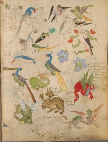 The Illuminated Sketchbook of Stephan Scriber